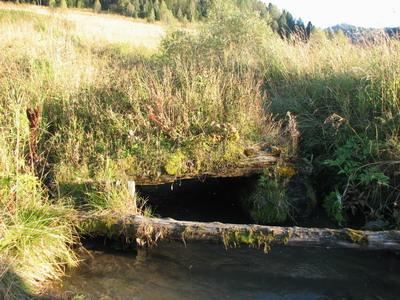 Остстки старого моста