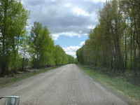 Асфальт от Змеиногорска до Барановки