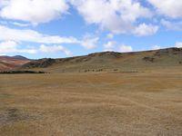 Загон для скота в долине Аккола